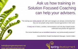 Solution Focused Coaching